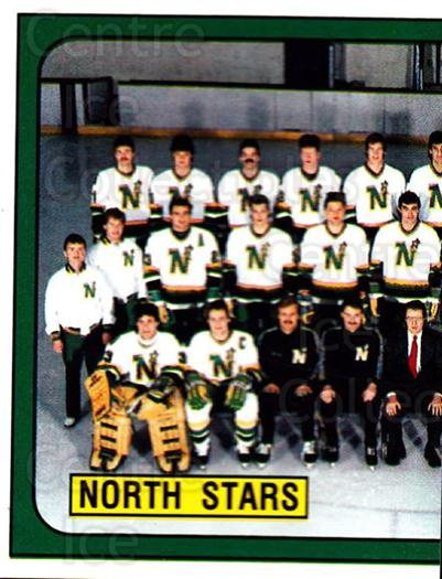 1988-89 Panini Stickers #96 Minnesota North Stars, Team Photo<br/>5 In Stock - $1.00 each - <a href=https://centericecollectibles.foxycart.com/cart?name=1988-89%20Panini%20Stickers%20%2396%20Minnesota%20North...&price=$1.00&code=139504 class=foxycart> Buy it now! </a>