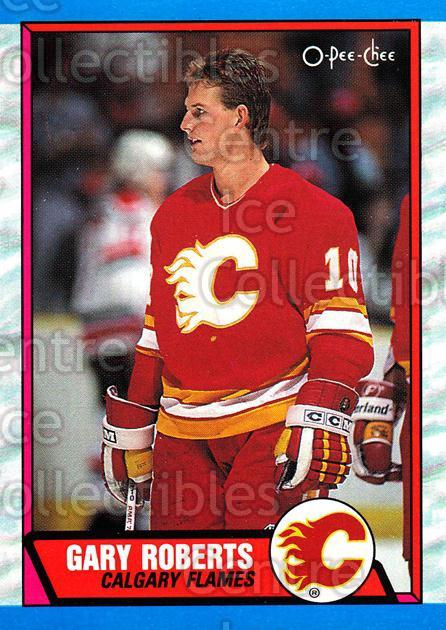 1989-90 O-Pee-Chee #202 Gary Roberts<br/>10 In Stock - $2.00 each - <a href=https://centericecollectibles.foxycart.com/cart?name=1989-90%20O-Pee-Chee%20%23202%20Gary%20Roberts...&price=$2.00&code=21158 class=foxycart> Buy it now! </a>