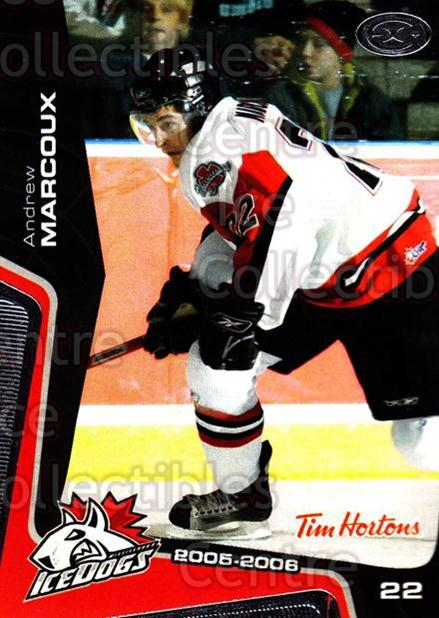 2005-06 Mississauga Ice Dogs #12 Andrew Marcoux<br/>1 In Stock - $3.00 each - <a href=https://centericecollectibles.foxycart.com/cart?name=2005-06%20Mississauga%20Ice%20Dogs%20%2312%20Andrew%20Marcoux...&quantity_max=1&price=$3.00&code=212639 class=foxycart> Buy it now! </a>