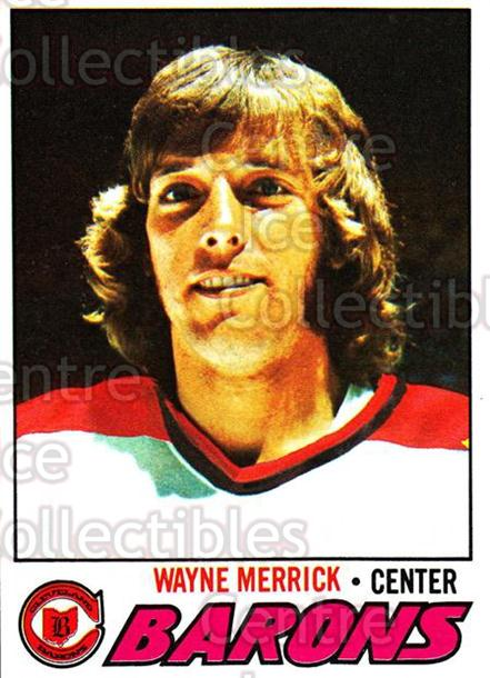 1977-78 Topps #176 Wayne Merrick<br/>4 In Stock - $1.00 each - <a href=https://centericecollectibles.foxycart.com/cart?name=1977-78%20Topps%20%23176%20Wayne%20Merrick...&price=$1.00&code=213719 class=foxycart> Buy it now! </a>