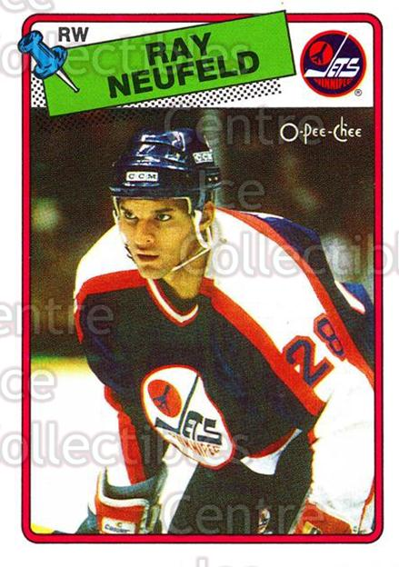 1988-89 O-Pee-Chee #239 Ray Neufeld<br/>6 In Stock - $1.00 each - <a href=https://centericecollectibles.foxycart.com/cart?name=1988-89%20O-Pee-Chee%20%23239%20Ray%20Neufeld...&quantity_max=6&price=$1.00&code=22267 class=foxycart> Buy it now! </a>