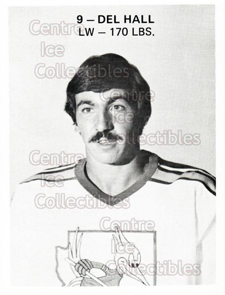 1975-76 Phoenix Roadrunners WHA #10 Del Hall<br/>5 In Stock - $3.00 each - <a href=https://centericecollectibles.foxycart.com/cart?name=1975-76%20Phoenix%20Roadrunners%20WHA%20%2310%20Del%20Hall...&quantity_max=5&price=$3.00&code=30216 class=foxycart> Buy it now! </a>