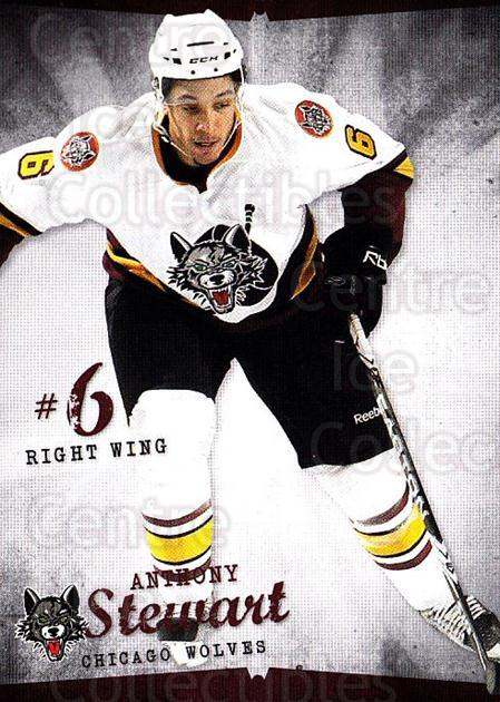 2009-10 Chicago Wolves #5 Anthony Stewart<br/>1 In Stock - $3.00 each - <a href=https://centericecollectibles.foxycart.com/cart?name=2009-10%20Chicago%20Wolves%20%235%20Anthony%20Stewart...&quantity_max=1&price=$3.00&code=381812 class=foxycart> Buy it now! </a>