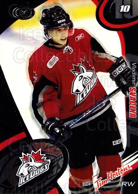 2004-05 Mississauga Ice Dogs #12 Vladimir Svacina<br/>4 In Stock - $3.00 each - <a href=https://centericecollectibles.foxycart.com/cart?name=2004-05%20Mississauga%20Ice%20Dogs%20%2312%20Vladimir%20Svacin...&quantity_max=4&price=$3.00&code=539439 class=foxycart> Buy it now! </a>