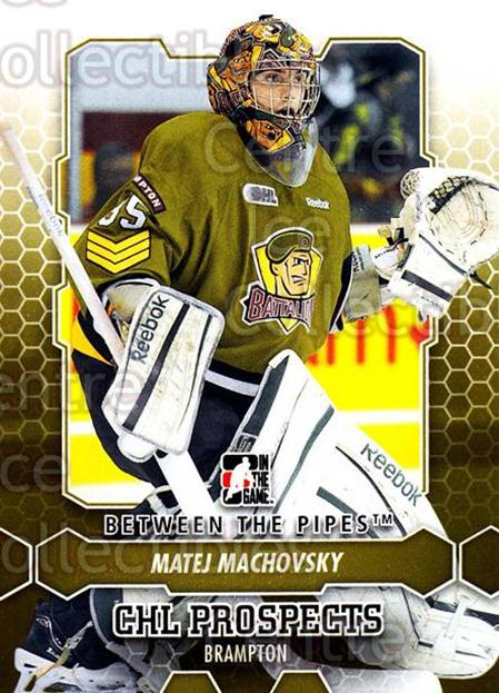 2012-13 Between The Pipes #7 Matej Machovsky<br/>5 In Stock - $1.00 each - <a href=https://centericecollectibles.foxycart.com/cart?name=2012-13%20Between%20The%20Pipes%20%237%20Matej%20Machovsky...&quantity_max=5&price=$1.00&code=542077 class=foxycart> Buy it now! </a>