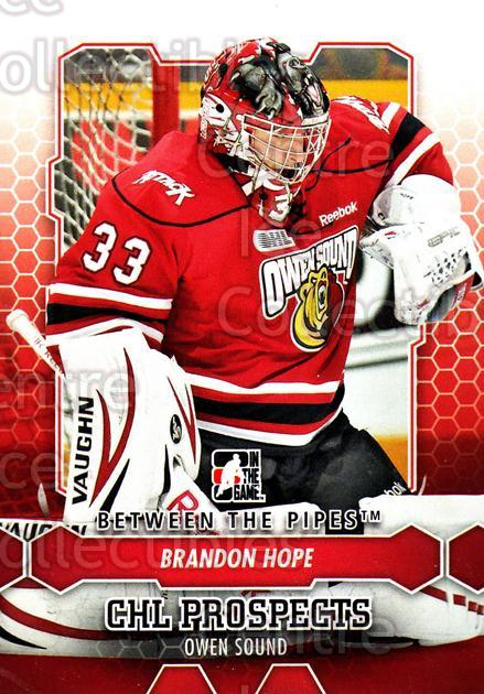 2012-13 Between The Pipes #44 Brandon Hope<br/>11 In Stock - $1.00 each - <a href=https://centericecollectibles.foxycart.com/cart?name=2012-13%20Between%20The%20Pipes%20%2344%20Brandon%20Hope...&quantity_max=11&price=$1.00&code=542114 class=foxycart> Buy it now! </a>