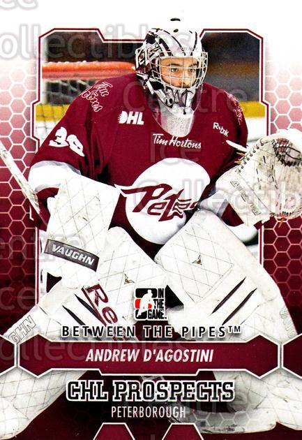 2012-13 Between The Pipes #48 Andrew D'Agostini<br/>7 In Stock - $1.00 each - <a href=https://centericecollectibles.foxycart.com/cart?name=2012-13%20Between%20The%20Pipes%20%2348%20Andrew%20D'Agosti...&quantity_max=7&price=$1.00&code=542118 class=foxycart> Buy it now! </a>