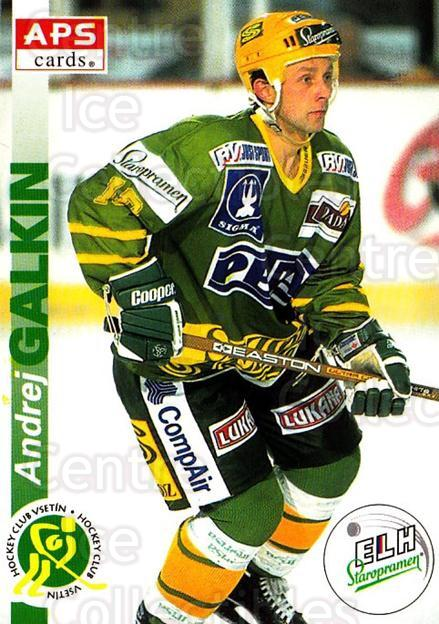 1996-97 Czech APS Extraliga #232 Andrej Galkin<br/>1 In Stock - $2.00 each - <a href=https://centericecollectibles.foxycart.com/cart?name=1996-97%20Czech%20APS%20Extraliga%20%23232%20Andrej%20Galkin...&quantity_max=1&price=$2.00&code=608424 class=foxycart> Buy it now! </a>