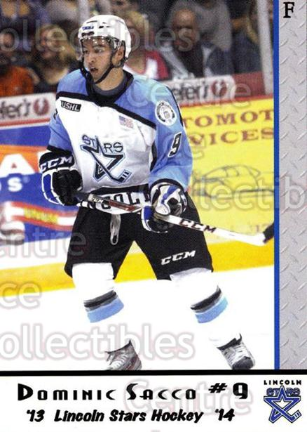 2013-14 Lincoln Stars #8 Dominick Sacco<br/>4 In Stock - $3.00 each - <a href=https://centericecollectibles.foxycart.com/cart?name=2013-14%20Lincoln%20Stars%20%238%20Dominick%20Sacco...&quantity_max=4&price=$3.00&code=643129 class=foxycart> Buy it now! </a>