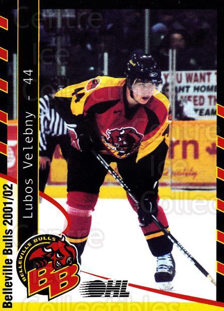 2001-02 Belleville Bulls Update #9 Lubos Velebny<br/>1 In Stock - $3.00 each - <a href=https://centericecollectibles.foxycart.com/cart?name=2001-02%20Belleville%20Bulls%20Update%20%239%20Lubos%20Velebny...&price=$3.00&code=669224 class=foxycart> Buy it now! </a>
