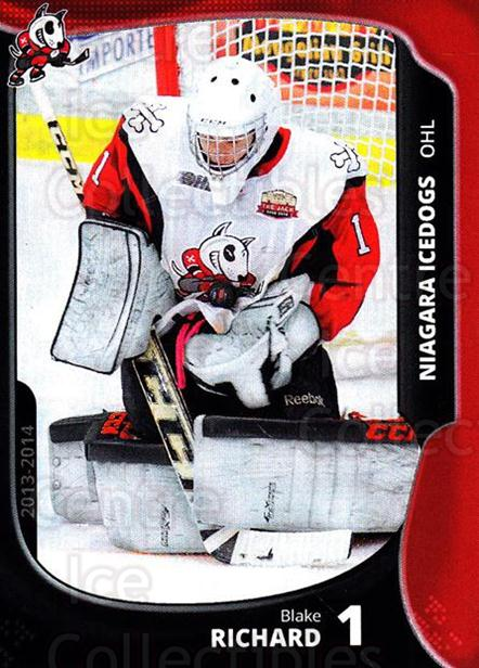 2013-14 Niagara IceDogs #1 Blake Richard<br/>1 In Stock - $3.00 each - <a href=https://centericecollectibles.foxycart.com/cart?name=2013-14%20Niagara%20IceDogs%20%231%20Blake%20Richard...&quantity_max=1&price=$3.00&code=670591 class=foxycart> Buy it now! </a>