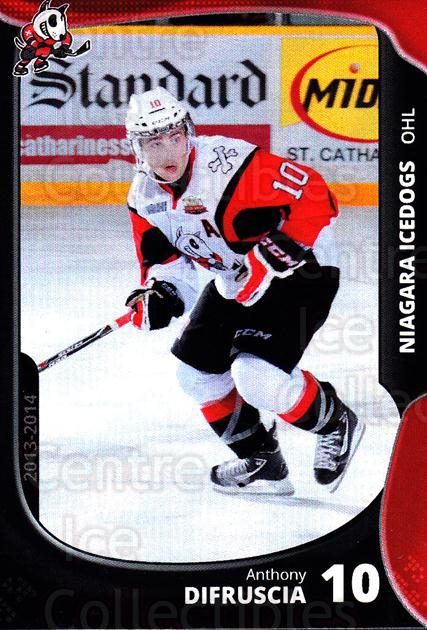 2013-14 Niagara IceDogs #8 Anthony DiFruscia<br/>2 In Stock - $3.00 each - <a href=https://centericecollectibles.foxycart.com/cart?name=2013-14%20Niagara%20IceDogs%20%238%20Anthony%20DiFrusc...&price=$3.00&code=670598 class=foxycart> Buy it now! </a>