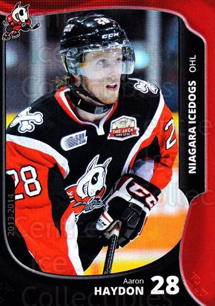 2013-14 Niagara IceDogs #21 Aaron Haydon<br/>2 In Stock - $3.00 each - <a href=https://centericecollectibles.foxycart.com/cart?name=2013-14%20Niagara%20IceDogs%20%2321%20Aaron%20Haydon...&quantity_max=2&price=$3.00&code=670611 class=foxycart> Buy it now! </a>