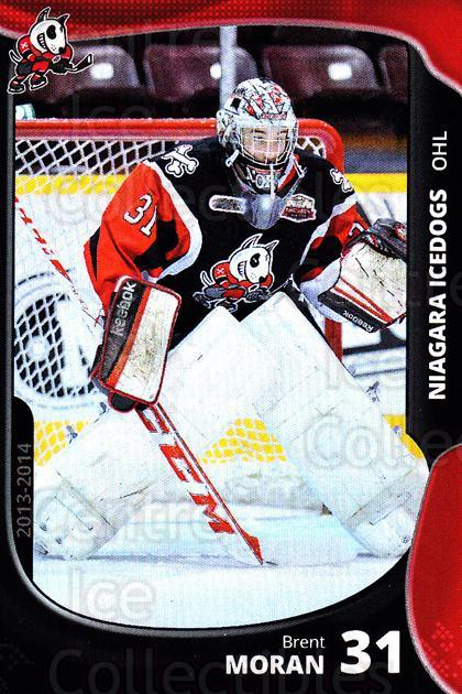 2013-14 Niagara IceDogs #23 Brent Moran<br/>2 In Stock - $3.00 each - <a href=https://centericecollectibles.foxycart.com/cart?name=2013-14%20Niagara%20IceDogs%20%2323%20Brent%20Moran...&price=$3.00&code=670613 class=foxycart> Buy it now! </a>