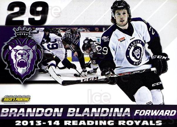 2013-14 Reading Royals #3 Brandon Blandina<br/>2 In Stock - $3.00 each - <a href=https://centericecollectibles.foxycart.com/cart?name=2013-14%20Reading%20Royals%20%233%20Brandon%20Blandin...&price=$3.00&code=696251 class=foxycart> Buy it now! </a>