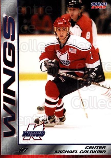 2001-02 Kalamazoo Wings #2 Mike Goldkind<br/>2 In Stock - $3.00 each - <a href=https://centericecollectibles.foxycart.com/cart?name=2001-02%20Kalamazoo%20Wings%20%232%20Mike%20Goldkind...&quantity_max=2&price=$3.00&code=696541 class=foxycart> Buy it now! </a>