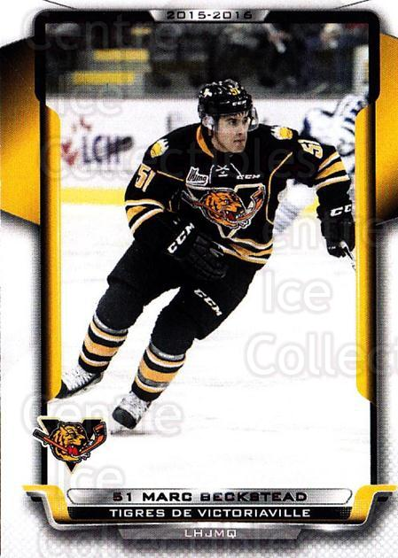 2015-16 Victoriaville Tigres #2 Marc Beckstead<br/>1 In Stock - $3.00 each - <a href=https://centericecollectibles.foxycart.com/cart?name=2015-16%20Victoriaville%20Tigres%20%232%20Marc%20Beckstead...&quantity_max=1&price=$3.00&code=705338 class=foxycart> Buy it now! </a>
