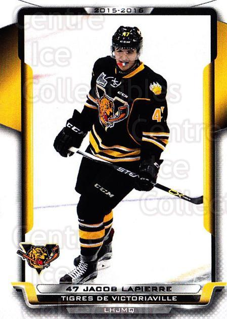 2015-16 Victoriaville Tigres #4 Jacob Lapierre<br/>1 In Stock - $3.00 each - <a href=https://centericecollectibles.foxycart.com/cart?name=2015-16%20Victoriaville%20Tigres%20%234%20Jacob%20Lapierre...&quantity_max=1&price=$3.00&code=705340 class=foxycart> Buy it now! </a>