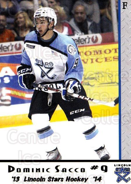 2013-14 Lincoln Stars High Gloss #8 Dominick Sacco<br/>3 In Stock - $3.00 each - <a href=https://centericecollectibles.foxycart.com/cart?name=2013-14%20Lincoln%20Stars%20High%20Gloss%20%238%20Dominick%20Sacco...&quantity_max=3&price=$3.00&code=707143 class=foxycart> Buy it now! </a>