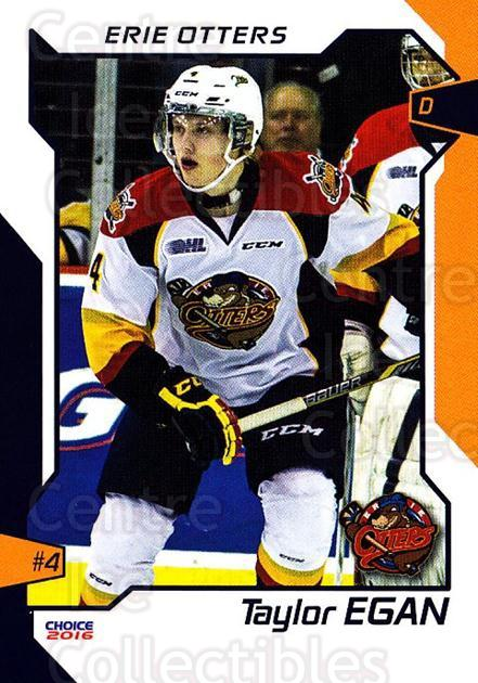 2015-16 Erie Otters #7 Taylor Egan<br/>1 In Stock - $3.00 each - <a href=https://centericecollectibles.foxycart.com/cart?name=2015-16%20Erie%20Otters%20%237%20Taylor%20Egan...&price=$3.00&code=718031 class=foxycart> Buy it now! </a>