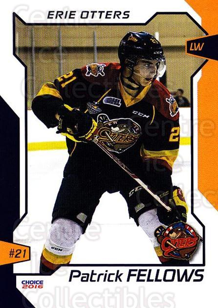 2015-16 Erie Otters #8 Patrick Fellows<br/>1 In Stock - $3.00 each - <a href=https://centericecollectibles.foxycart.com/cart?name=2015-16%20Erie%20Otters%20%238%20Patrick%20Fellows...&price=$3.00&code=718032 class=foxycart> Buy it now! </a>