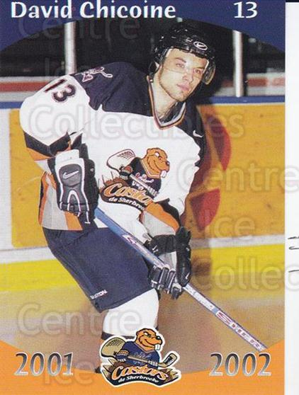 2001-02 Sherbrooke Castors #6 David Chicoine<br/>4 In Stock - $3.00 each - <a href=https://centericecollectibles.foxycart.com/cart?name=2001-02%20Sherbrooke%20Castors%20%236%20David%20Chicoine...&price=$3.00&code=96435 class=foxycart> Buy it now! </a>